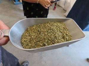 פריקֶה (فريكة) מאכל דגן מגרעיני חיטה ירוקה שטרם הבשילה (אביב בשפת המקרא). נפוץ במטבחים הערביים. הפריקה נמכרת שלמה, בגריסה גסה ובגריסה דקה.