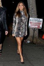 Nicole_Scherzinger (6)