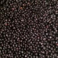 Caviar du Médoc
