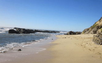 Beach - feature image