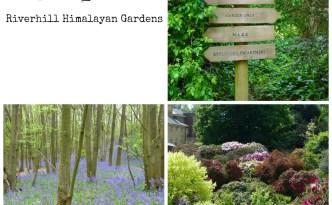 Riverhill Himalayan Gardens Collage