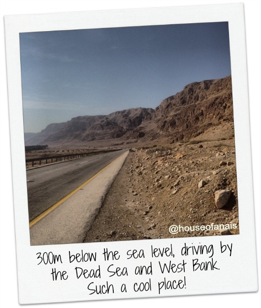 Road by Dead Sea