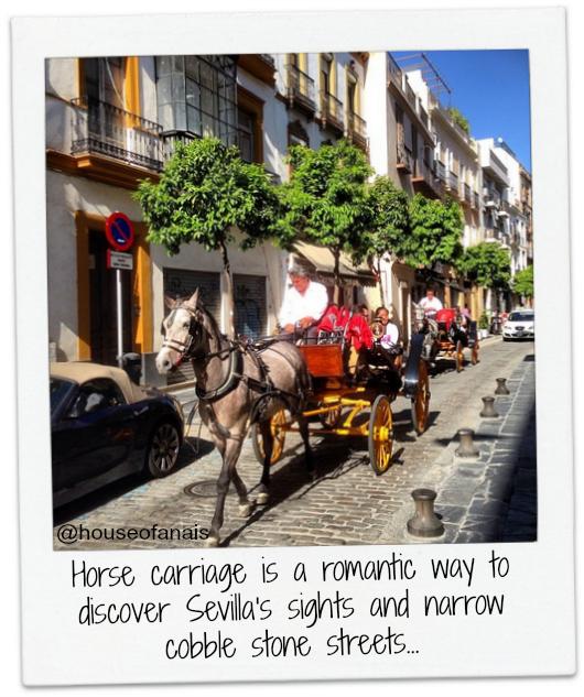 Sevilla horse carriage