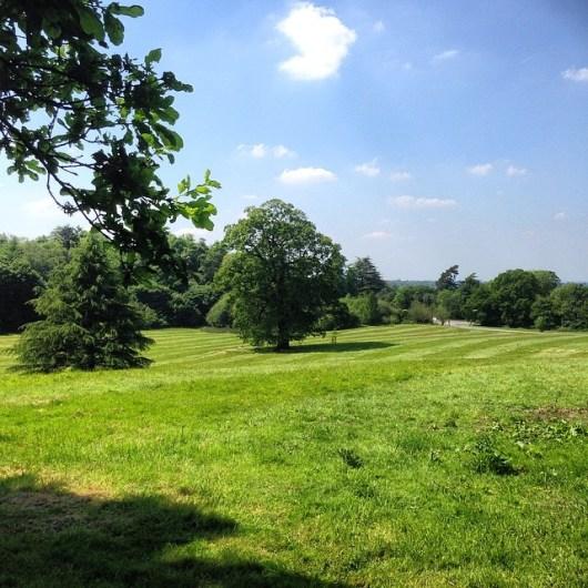 English Countyside, Esher, Surrey