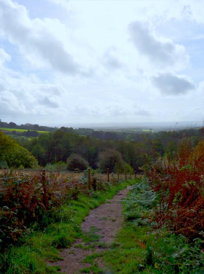 Emmetts Garden view to valley