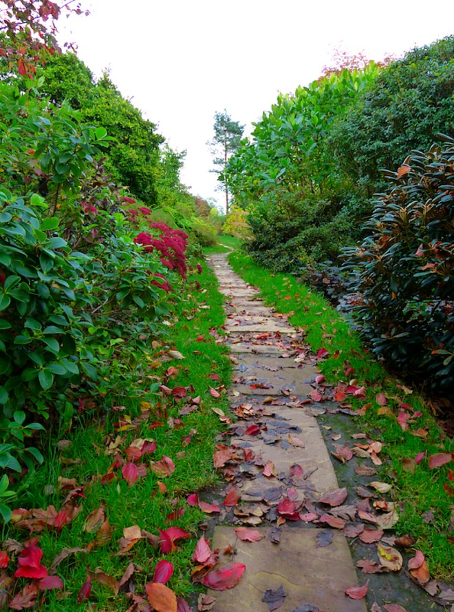 Exploring Emmetts Garden in Ide Hill