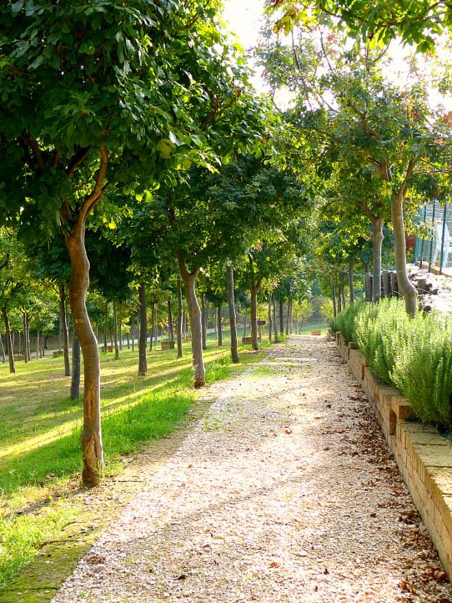 Contea gardens