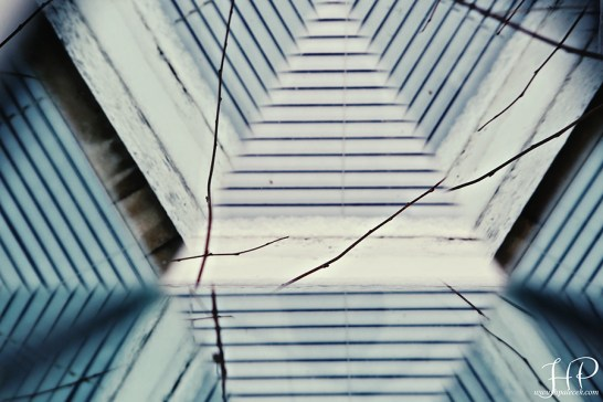 kaleidoscope - Blinds and Lines and Twigs