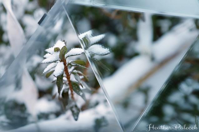 kaleidoscope - snow covered