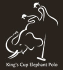 King's Cup Elephant Polo 2014