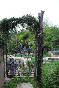 Image of Vegetable garden gate Tait Moring
