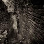 naia-rochefort en terre-16