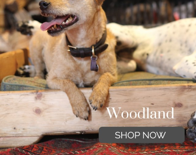 personalised wooden dog beds