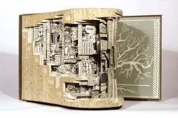 Галерея работ по вырезанию из книг Брайана Диттмера (14)