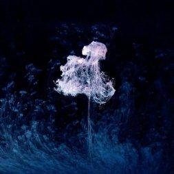 Галерея работ с масляными красками фотографа Марка Моусона (21)