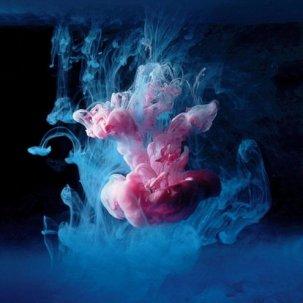 Галерея работ с масляными красками фотографа Марка Моусона (7)