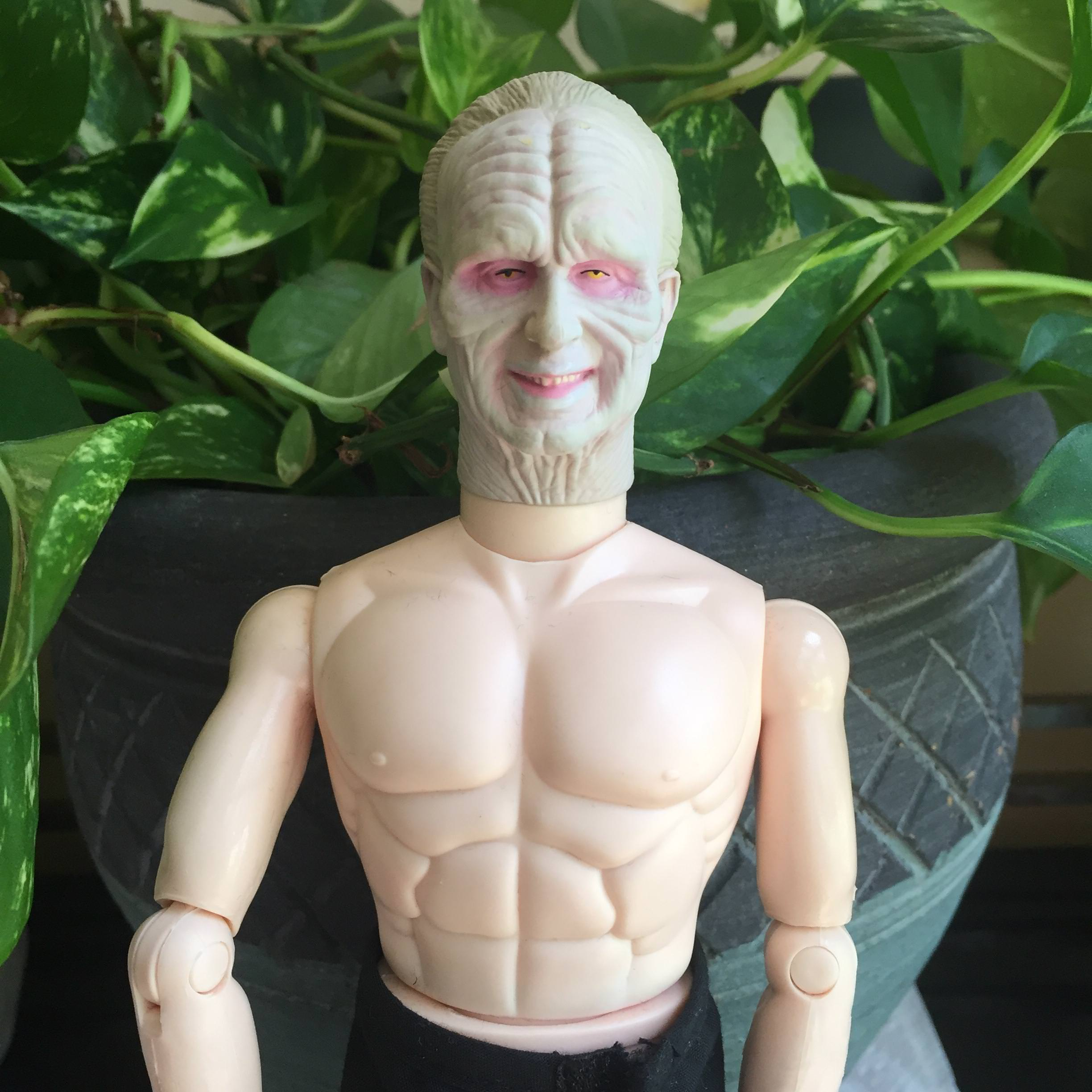 Never realized Palpatine was so ripped