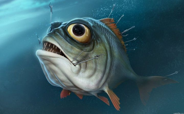Piranha-Desktop-Hd-Wallpapers