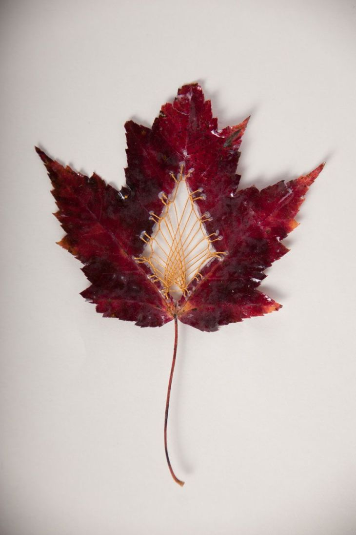 stitched-leaves-embroidery-hillary-fayle-16