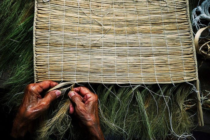 finalist-this-80-year-old-woman-in-the-philippines-is-weaving-a-protective-shield-for-rain-sun-and-heavy-wind