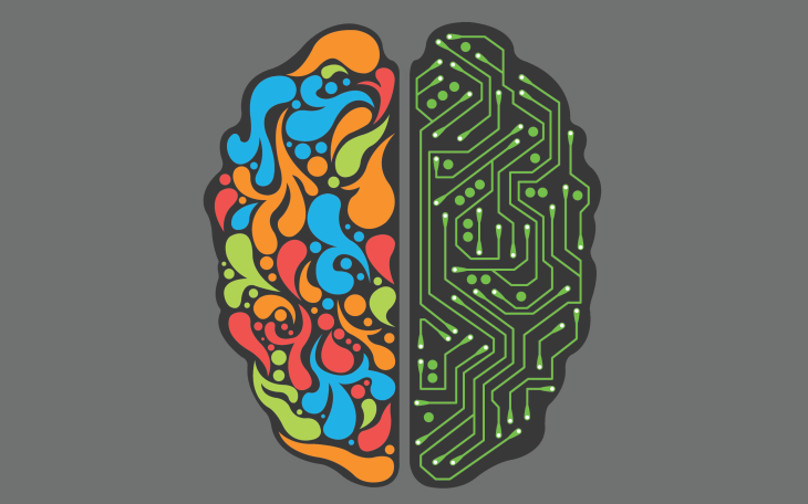 the-two-sides-of-the-brain-vector-hd-wallpaper-2560x1600-2633