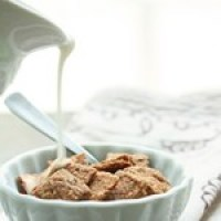 Cinnamon Faux-st Crunch Cereal - Low Carb and Gluten Free