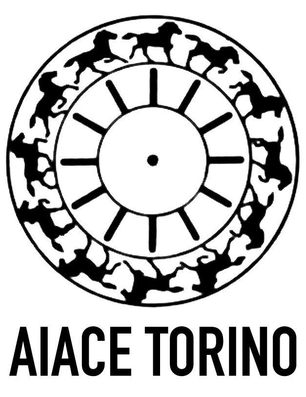 A.I.A.C.E. Torino