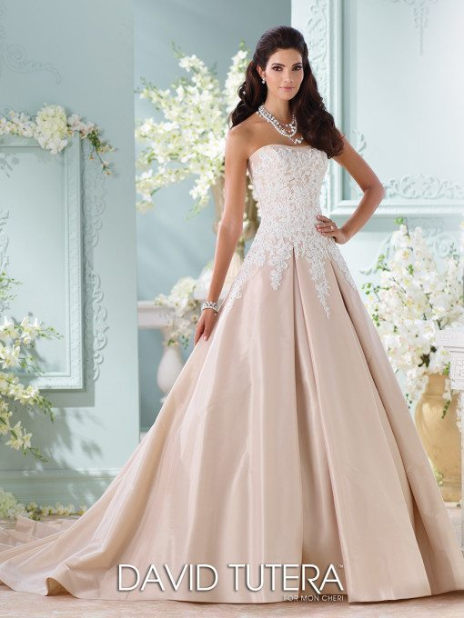 Dip your toes into the champagne with this gown, it's such a flattering silhouette on a woman's body.