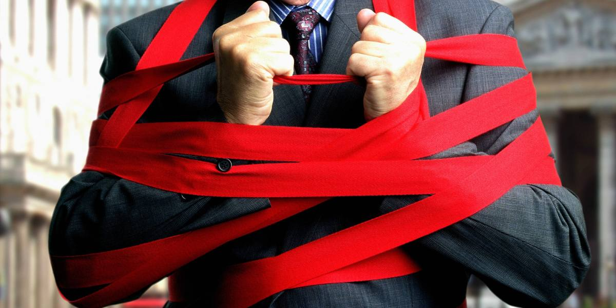 Red Tape Strangling SEIS And EIS, Claims Expert