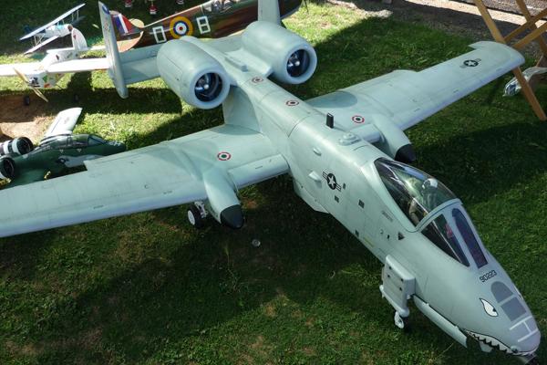 A10_warthog1