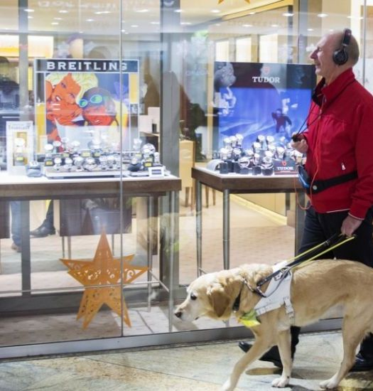 Microsoft Guide Dogs Headset