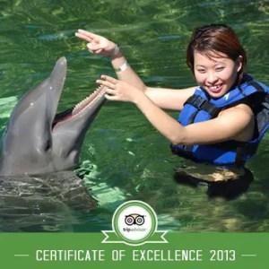 Dolphin Explorer Punta Cana