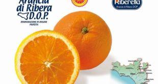 Arancia_Ribera_DOP_2013-2014