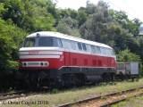 V160 di Serfer a San Vincenzo (LI)