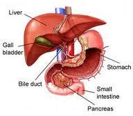 Pengobatan Penyakit Liver yang Mematikan