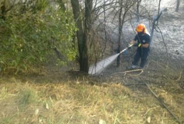 Due ettari di terreno incolto in fiamme in territorio di Scerni