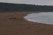 La zona di Punta Aderci inquinata per 4 giorni