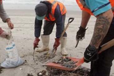 Stamane tutti a pulire la spiaggia di Punta Aderci
