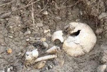 """""""Le ossa di Punta Aderci non vanno toccate, sono reperti archeologici a tutti gli effetti"""""""