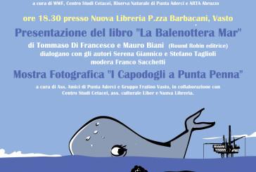 """Mercoledì la presentazione del libro """"La Balenottera Mar"""" di Tommaso Francesco e Mauro Biani"""