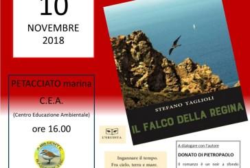 """""""Il Falco della Regina"""", il romanzo di Stefano Taglioli"""