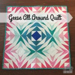 Geese All Around Quilt