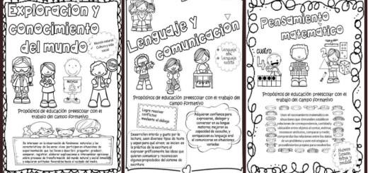 ambitos-de-desarrollo-del-aprendizaje-propositos-educativos-portada