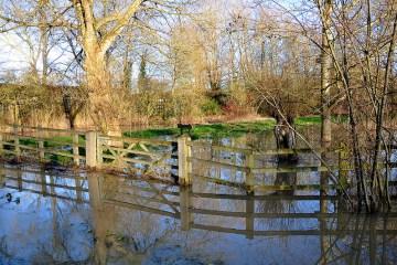 flood Martin Pettitt @ flickr