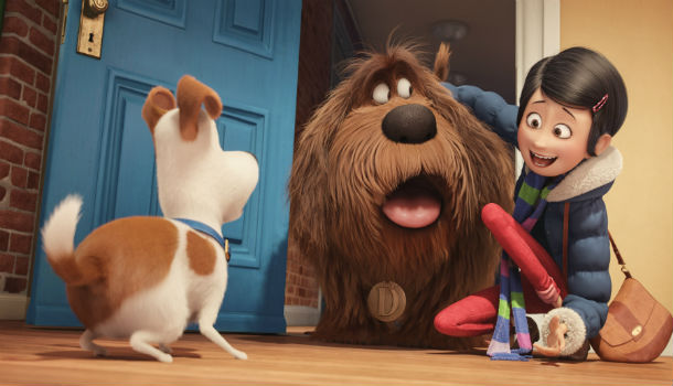 the secret life of pets image 1
