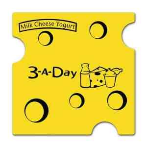 Cheese Vinyl Opener # V5SC