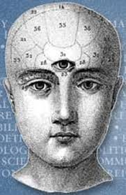 Pineal gland magnets