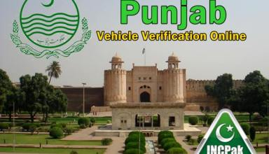 Punjab Vehicle Verification Online