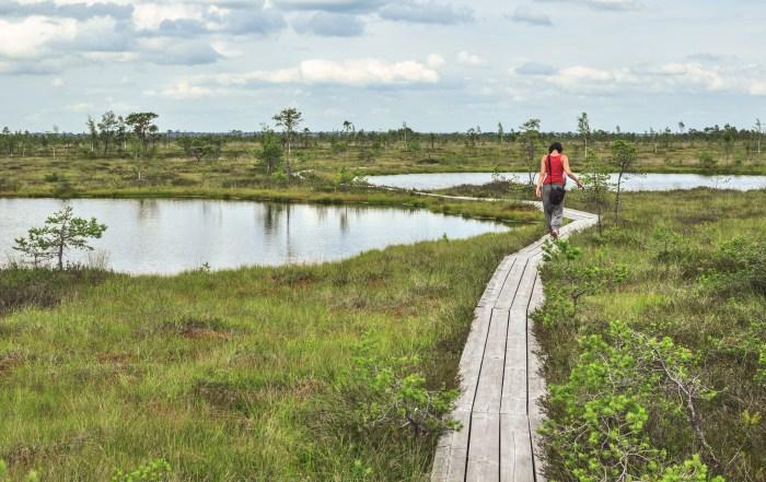 Soomaa national park, Estonia