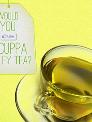 Tetley Green Tea Free Sample